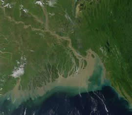 ganges delta problems Human development, mostly agriculture, has replaced nearly all of the original natural vegetation of the ganges basin more than 95% of the upper gangetic plain has been degraded or converted to agriculture or urban areas.