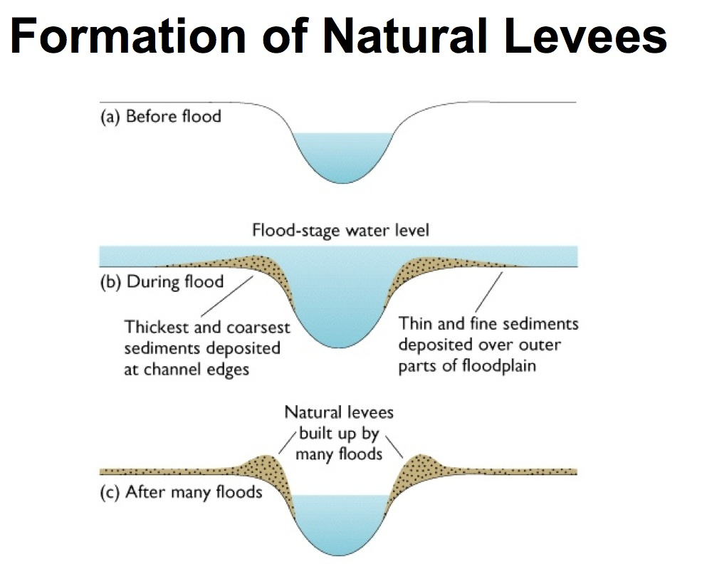 Formation Of A Levee